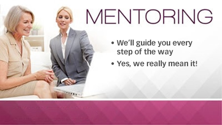 Free Mentoring twice a month with Executive